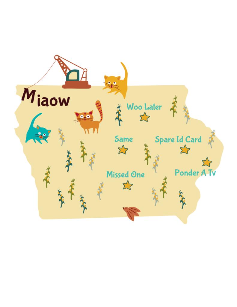 Anagram map of Iowa.